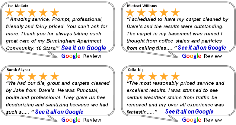 Professional Carpet Cleaning Reviews Carpet Vidalondon