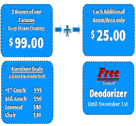 Carpet Cleaning Coupons Oakland County Mi Rochester Mi