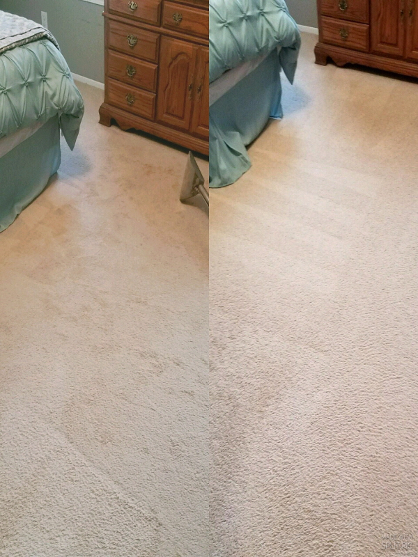 Carpet Care Services Near Me By Quot Daves Carpet Cleaning Quot