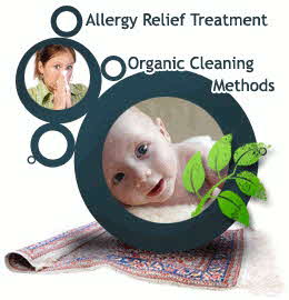 picture of allergy relief carpet cleaning