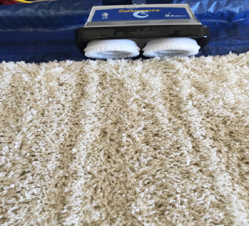 Picture of Area Rug Cleaning Scrubber in Rochester Hills, MI 48307