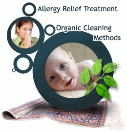 picture of carpet cleaning allergy relief